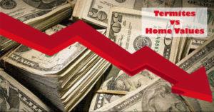 Termites impact home resale values