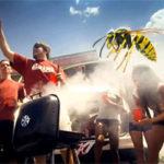 Wasps Crashing Your Outdoor Fall Football Festivities?